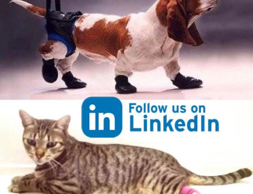 Check LinkedIn